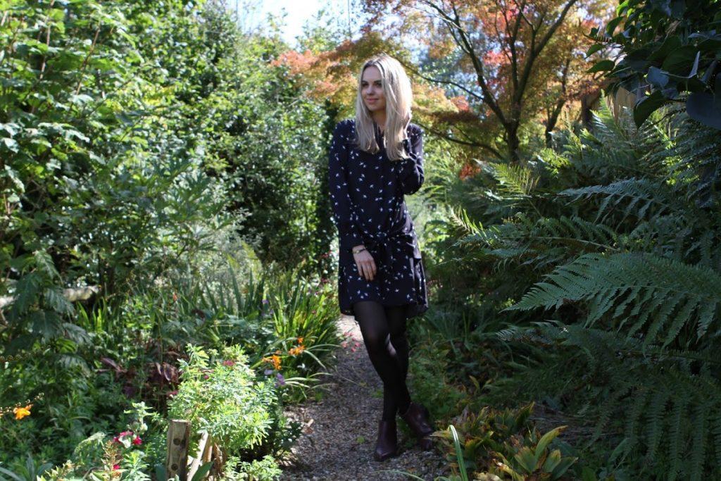 Debenhams Swallow print dress